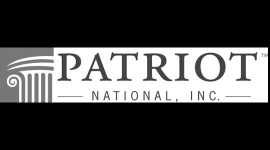 patriot_insurance_Gray scale